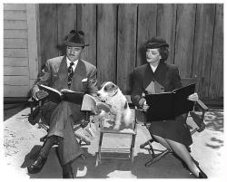 William Powell, Myrna Loy & Asta poster print (22x18) The Thin Man