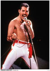 Queen poster: Freddie Mercury, Los Angeles 1982 (23 1/2'' X 33'')