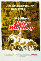 Ride A Wild Pony movie poster (Disney) 1975 original 27x41