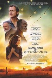 Same Kind of Different as Me movie poster [Kinnear, Zellweger] 27x40