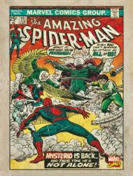 The Amazing Spider-Man tin sign (11x14) Issue 141 Cover