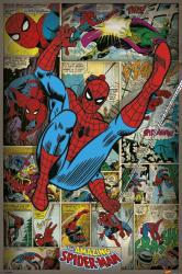 The Amazing Spider-Man poster: Marvel Comics panels (24'' X 36'') New