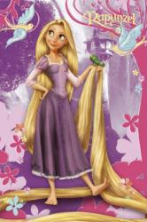Tangled movie poster: Rapunzel (24 X 36) Disney Princess