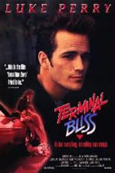 Terminal Bliss movie poster [Luke Perry] 27x40 video poster
