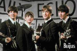 The Beatles poster: Daily Echo (36x24)