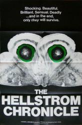 The Hellstrom Chronicle movie poster (1971) original 27x41