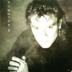 Timothy B. Schmit poster: Timothy B. vintage LP/Album flat