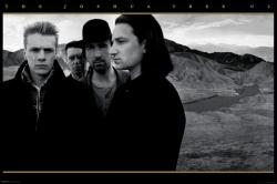 U2 poster: The Joshua Tree (36x24) New