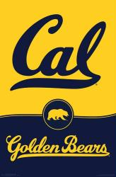 University of California, Berkeley Golden Bears poster (Logo) 22x34
