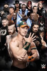 WWE Superstars poster (24x36) John Cena, Roman Reigns, Sheamus, etc.