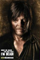 The Walking Dead poster: Norman Reedus as Daryl (24x36) Shoot Me Again