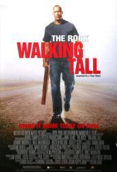 Walking Tall movie poster (2004) [Dwayne Johnson] 27x40 video version