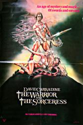 The Warrior and the Sorceress movie poster [David Carradine] video
