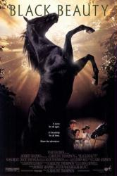 Black Beauty movie poster (1994] 27x40 video poster