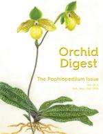 The Paphiopedilum Issue - Vol. 82-4