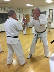 Uechi-ryu Review Course - Book One