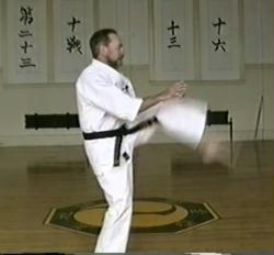 Basic Course - Uechi-ryu Karate (4-DVDs)