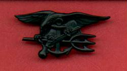 Navy Seal Badge in Subdued Combat Black
