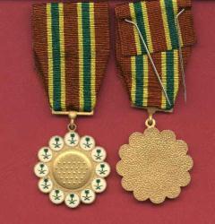 Saudi Combat medal Gulf War