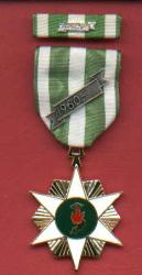 Vietnam Campaign Award medal with ribbon bar with 60 device