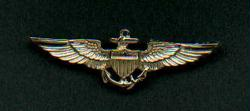 Navy or Marine USMC Pilot Wings